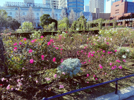 れなぽよ♡ちゃんの2020/4/30 (木) 15:02のブログ