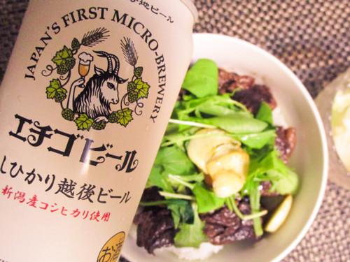 エチゴビール&お知らせ